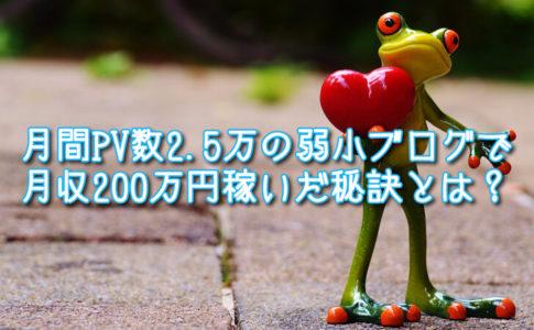 月間PV数2.5万の弱小ブログで月収200万円稼いだ秘訣とは?